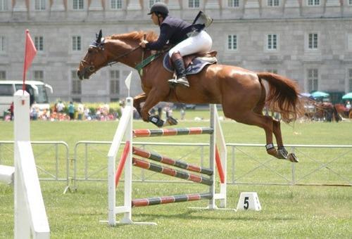 Montelibretti – Equitazione: Concorso Completo Internazionale