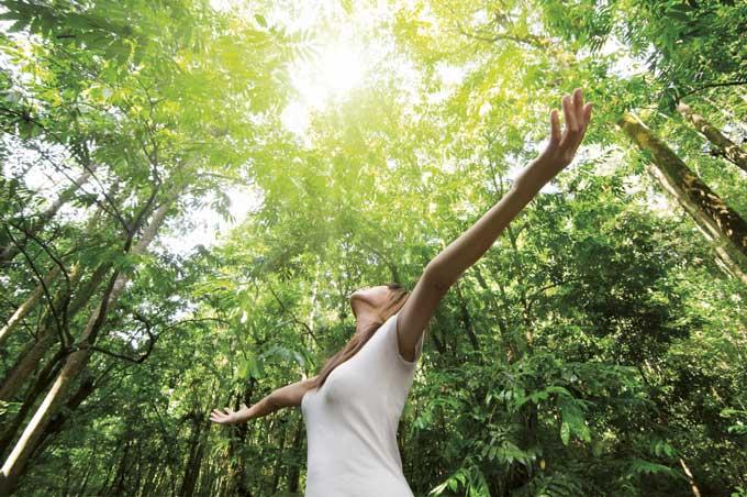 Bagno nella foresta per curare l'ansia e non solo